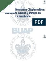 BIOLOGÍA CELULAR UNIDADES IV a VI.pdf