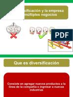 Tema #5 Diversificacion (1)