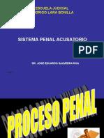 Sistema Penal Acusatorio Dr Saavedra Roa