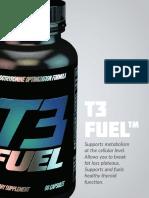 T3-Fuel