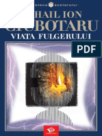 ciubotaru - viata fulgerului.pdf