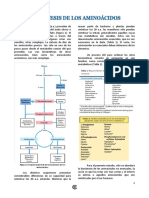 19096451-BIOSINTES-DE-AMINOACIDOS.pdf