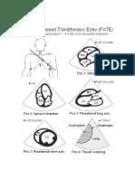 Transthoracic Echocardiography