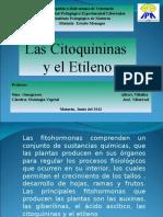 citoquininas y etileno