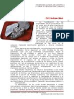 Primer Informe Roca -