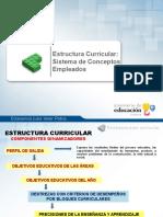 Estructura curricular.ppt