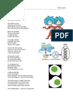 Mitosis Poem