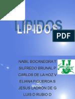 EXPOSICION LIPIDOS.....
