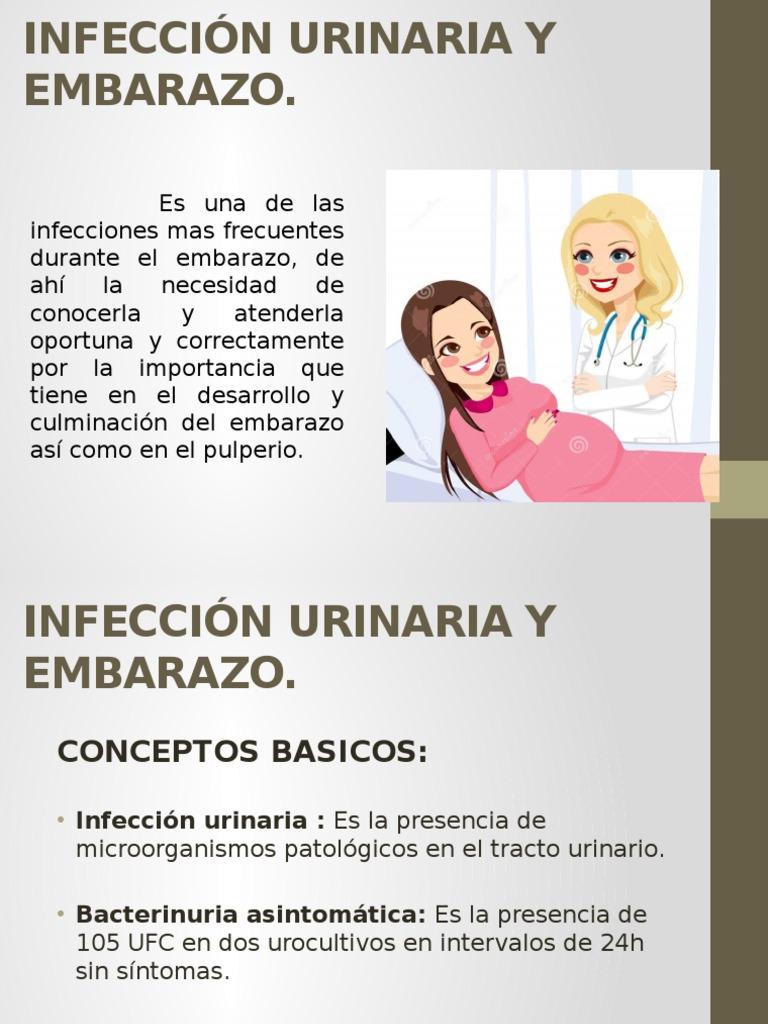 infeccion urinaria en el embarazo ppt