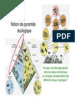 2-1-_Pyramides_ecologiques.pdf