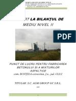 Raport la BM II _ APM