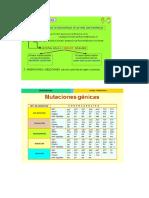 Mutaciones Génicas y Cromosómicas