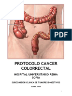 Protocolo Cancer Colorectal