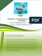 Ciclos Biogeoquimicos_1 (1)