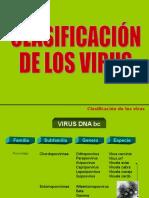 Clasif Virus