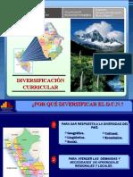 Diversificacion Ept 2009