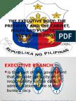 The Executive Body