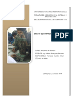 339236732-INFORMES-SUELOSII-pdf.docx