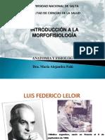 1 - Introduccion a La Morfofisiologia