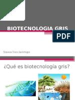 Biotecnologia Gris