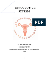Modul of Reproductive System