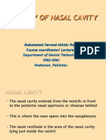 Anatomy of Nasal Cavity