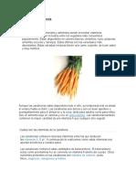 Vitaminas de La Zanahori1