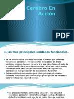 piscofisiologia -El-Cerebro-En-Acción..pptx
