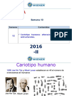 Semana 10 Cariotipo Humano