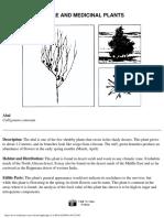 Wilderness Survival_ Edible and Medicinal Plants.pdf