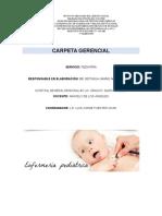 CARPETA GERENCIAL PEDIATRIA