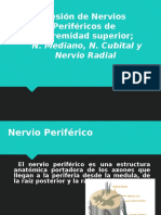 Lesion de Nervios Perifericos Mediano Ulnar y Radial