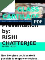 Bio Glass Cartilage