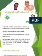 Virus de Varicela Zoster