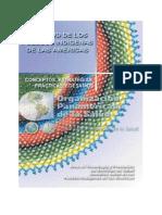 53 SPI Conceptos Estrategias.pdf