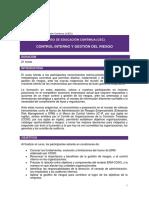 Control Interno y Gestion Del Riesgo-Villacorta