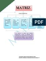 Bereche Mishel Primero a Características Matriz