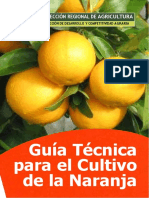 Gui an Citric Os