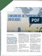 Consorcios de Exportación Enfocados