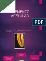 CEMENTO-ACELULAR