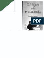 García Vieyrao, Alberto - Ensayos sobre pedagogía.pdf