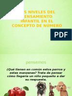 NIVELES DE PENSAMIENTO.pptx