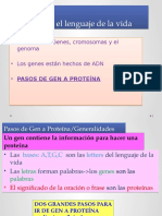 Transcripcion y Traduccion de Adn