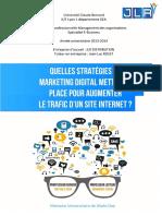 l'Efficacité de La Stratégie Digitale