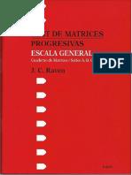 MANUAL -RAVEN- ESCALA GENERAL 1.pdf