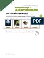 unidad5animalesinvertebrados-120801040949-phpapp02