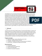 rebel softball handbook 2017 - google docs