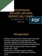 NAM.pptx