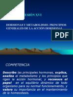 Nuevo Bioquimica Sesion XVI Hormonas Ok 1