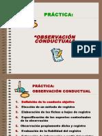 Fichas de observción